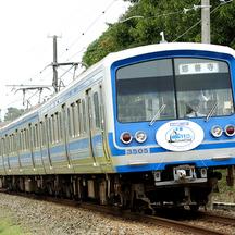 伊豆箱根鉄道2008年秋 1  - ヘッドマーク電車3題