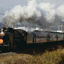 D51牽引「SL南房総号」運転