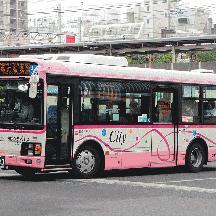 ちばシティバスC429号車 復刻塗装