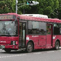 ちばレインボーバス307号車 京成トランジットバスカラーのエルガミオ