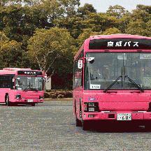 京成バス0101・0102・0103号車 ピンク色の貸切車