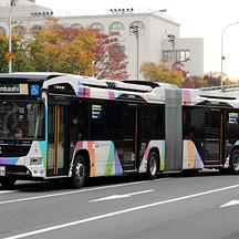 京成バス1009号車 いすゞエルガデュオLX525Z1