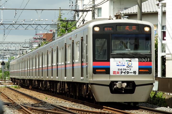 N02028.jpg