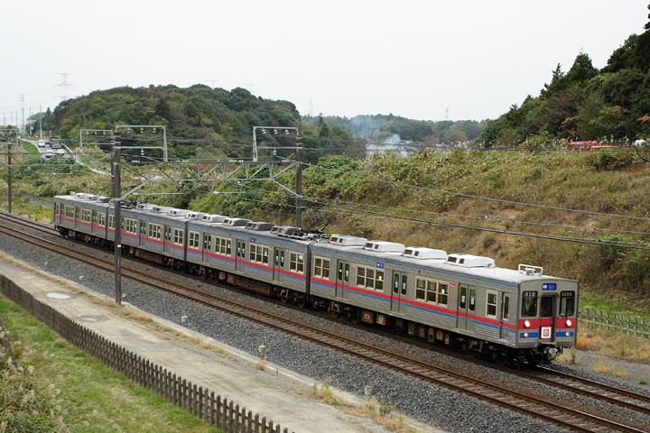 N12559.jpg