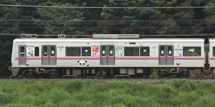 D02430.jpg