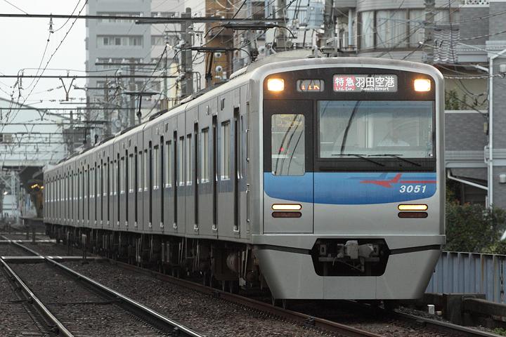 D11309.jpg