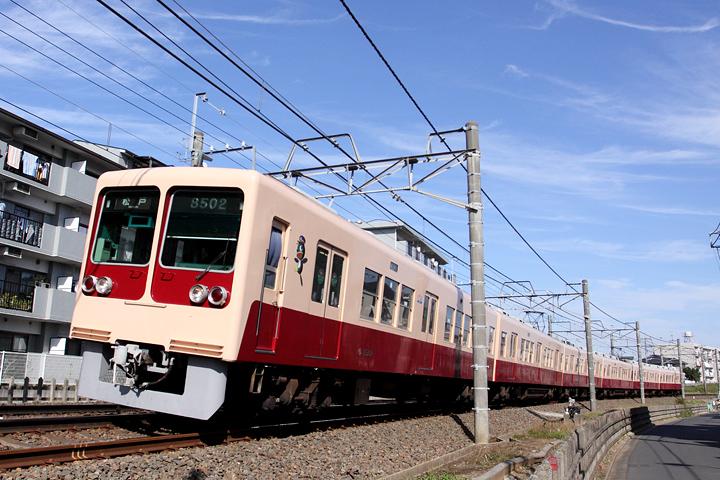 D12098.jpg