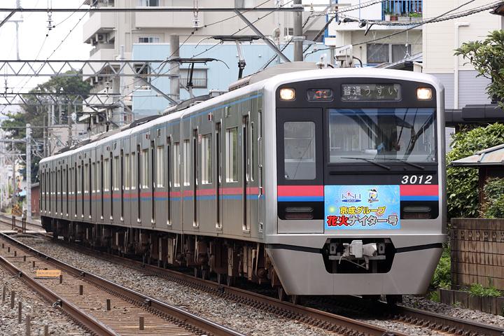 D15059.jpg