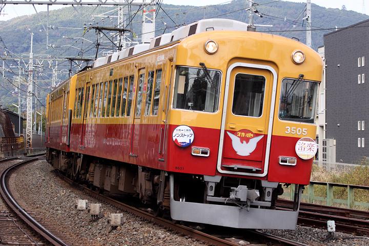 D16430.jpg