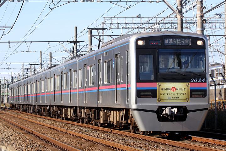 D16528.jpg