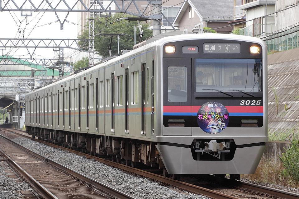 D24509.jpg
