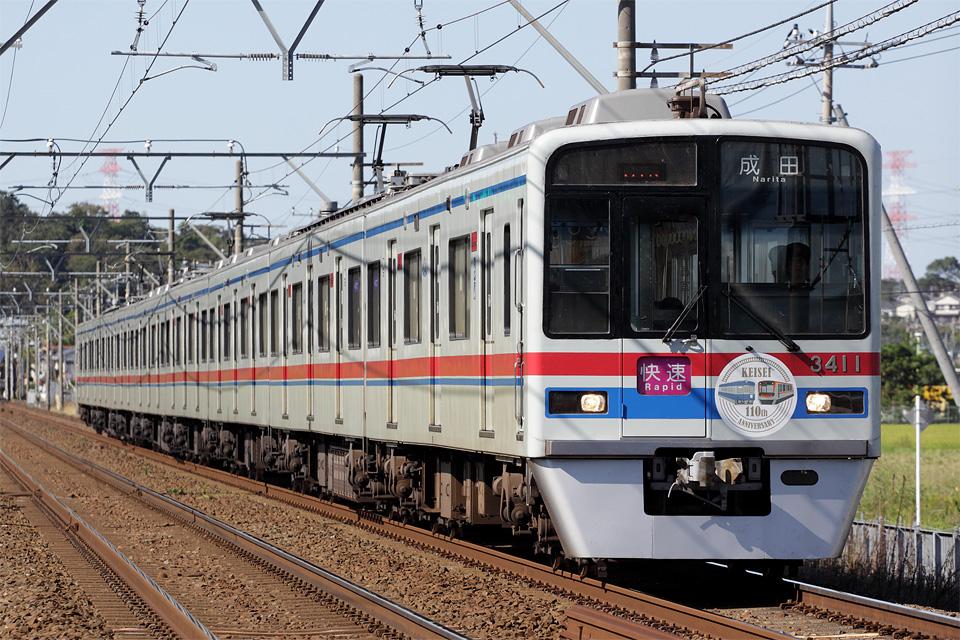 D33029.jpg