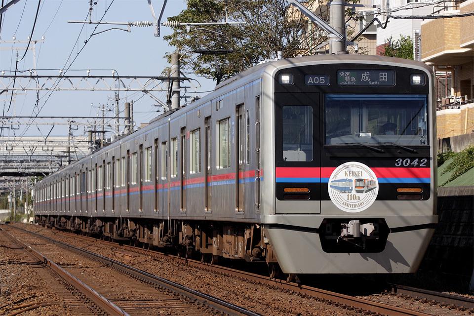 D33125.jpg