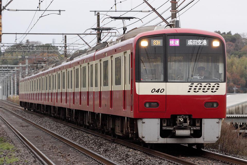 D33169.jpg